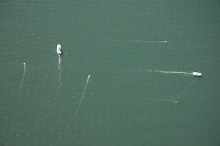 Aerial photo of trolling