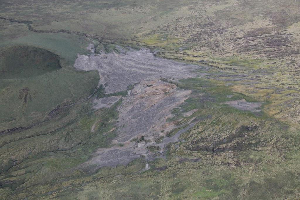 2016年12月30日空拍島上北邊的族群。Peter Ryan