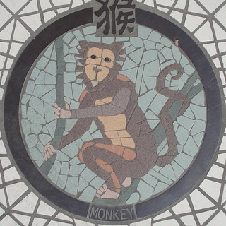 Monkey | by mag3737
