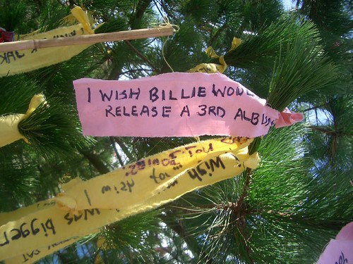 My wish on the wishing tree | by trixie