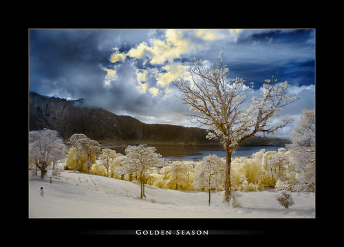-= golden season 2 =- | by Bram & Vera
