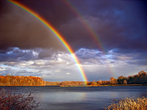 Double Bows | by Nicholas_T