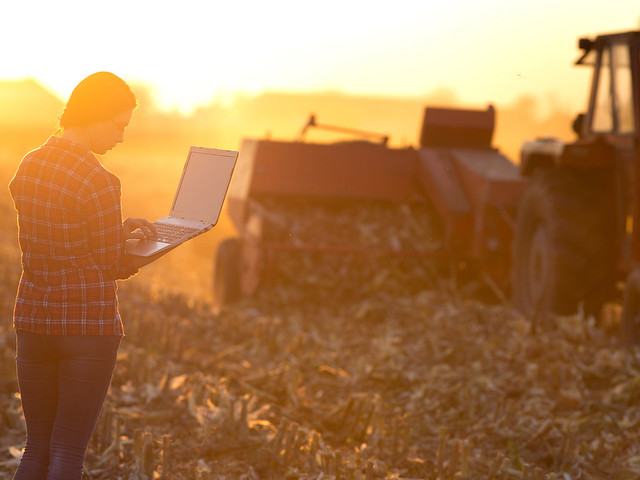 A farmer working on a computer