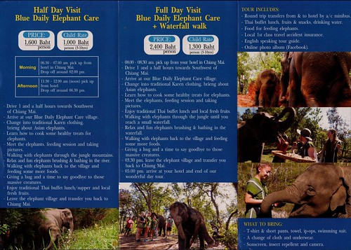 Blue Daily Elephant Care Chiang Mai Thailand Brochure 2