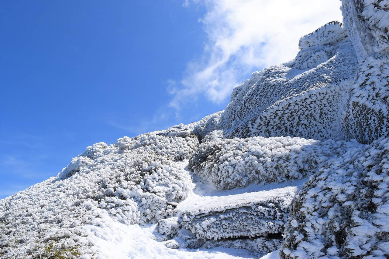 宮之浦岳 雪の岩場