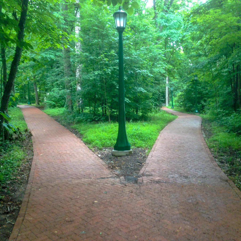 The path that you can go in one life 34