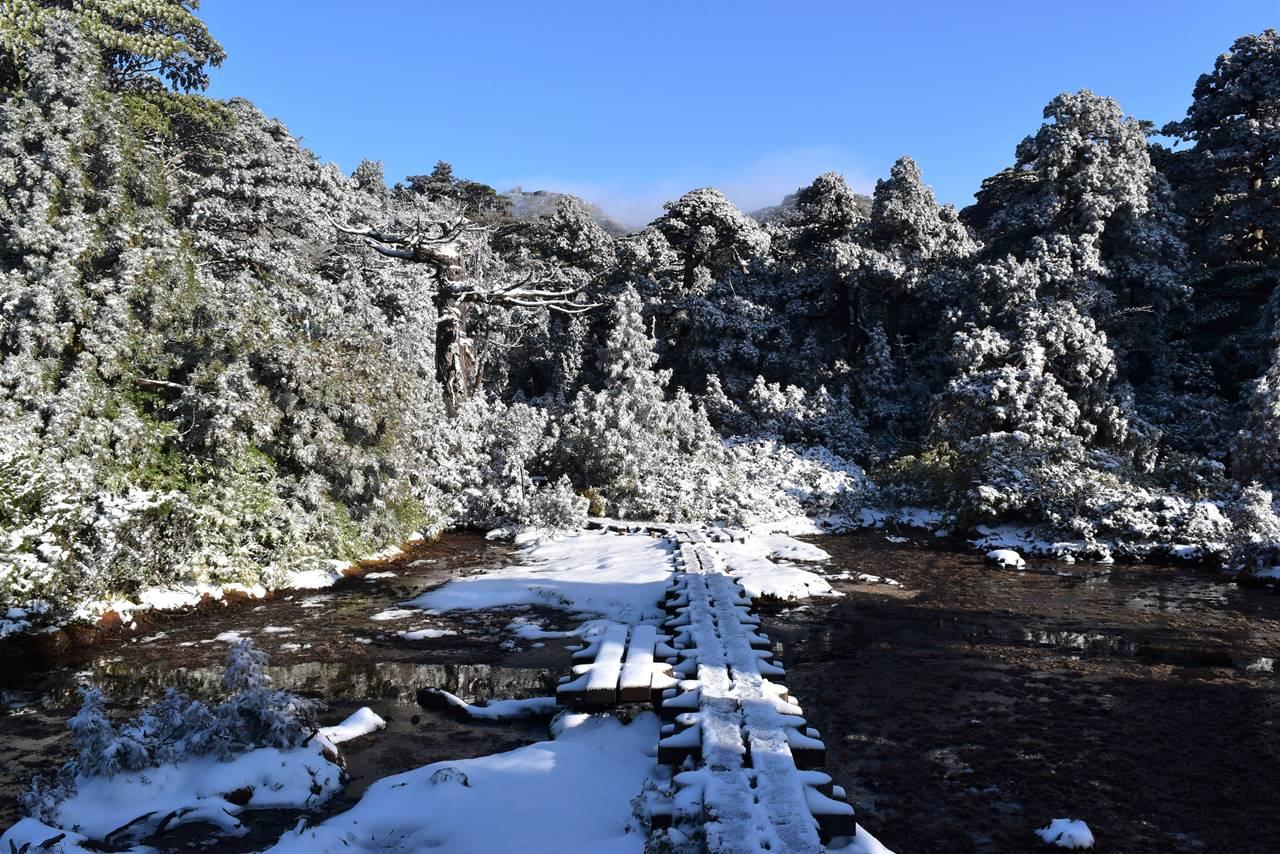 宮之浦岳登山 小花之江河の雪景色