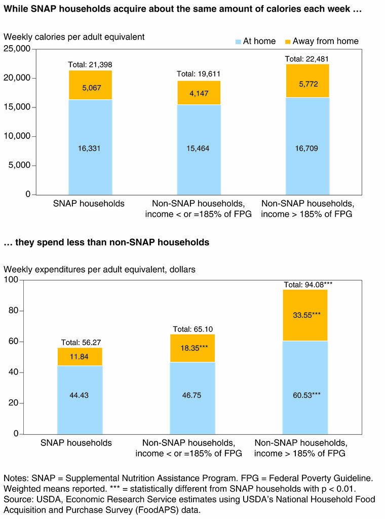 SNAP households calories charts