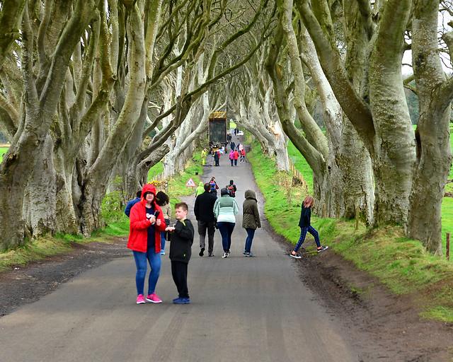Así es en realidad el bosque de Juego de Tronos de Irlanda del Norte