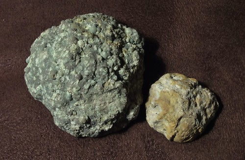 Image shows two nondescript gray-brown rocks. They are roughly circular and very bumpy. They look like plain boring stones.
