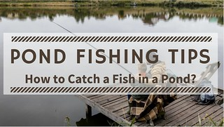 Pond Fishing Tips - How to Catch a Fish in a Pond | by Victor Mays