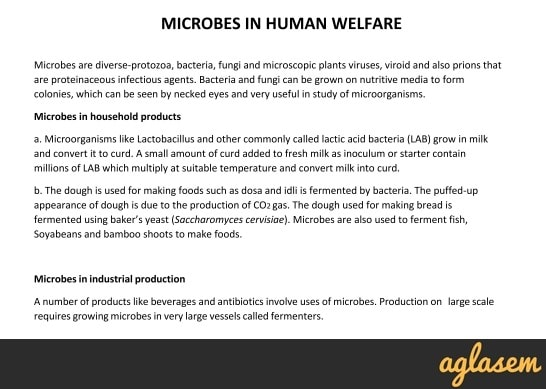 Important Notes of Biology for NEET: Microbes In Human Welfare
