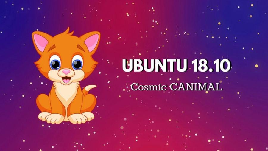 ubuntu-18-10-cosmic-canimal