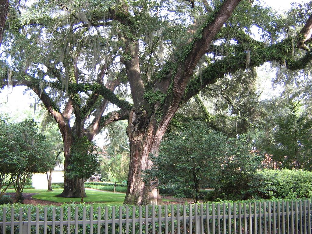 Hidden Oaks Nature Center Bolingbrook