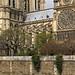 Rita Crane Photography: Paris / Notre Dame de Paris / Ile de la Cite' / gothic architecture / Cathedral / rose window / exterior facade / Notre Dame, Paris