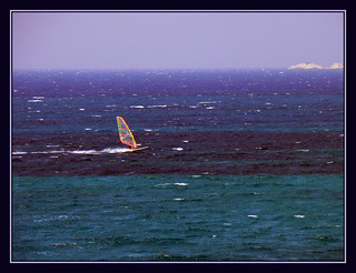 windsurf | by maryaben