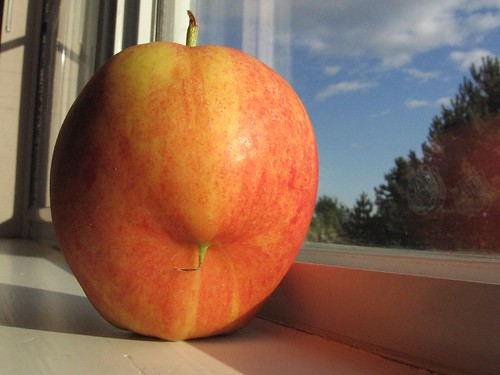 My apple has a strange growth!! | by Bob_2006