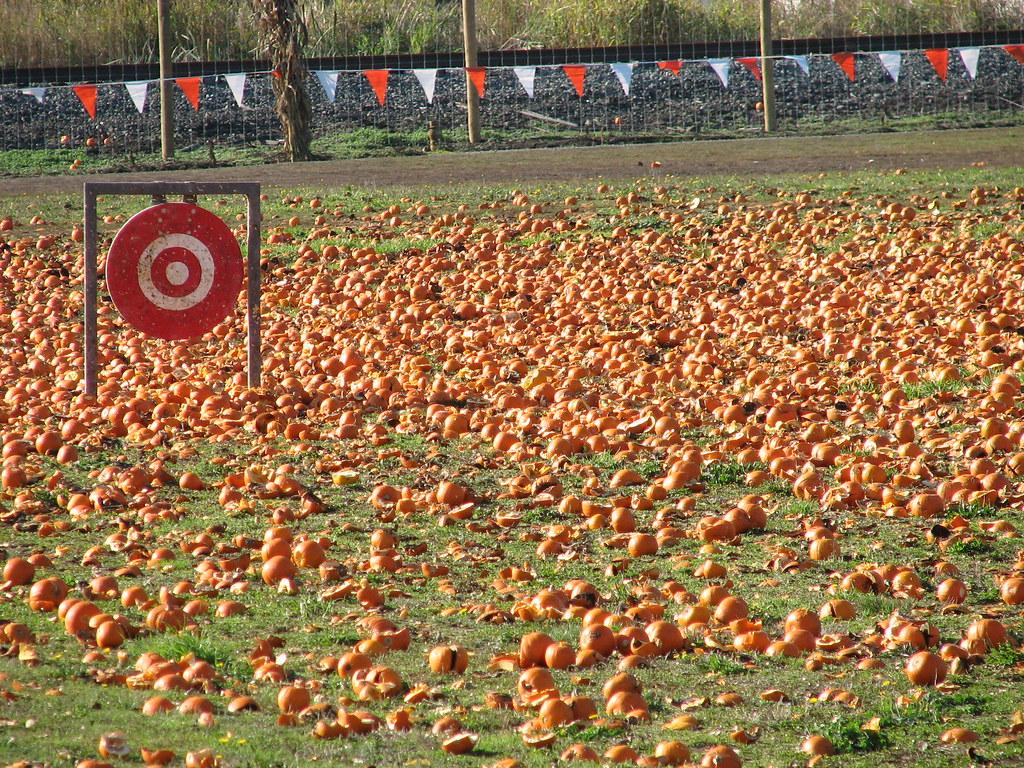 Pumpkin Slingshot Target