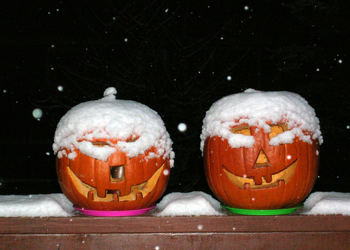 First Snow and Pumpkins | by Bearded Jon