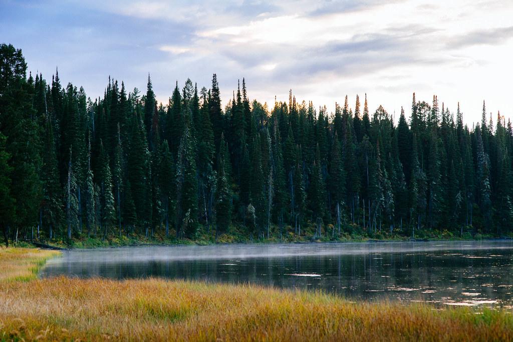 Yellowstone 33