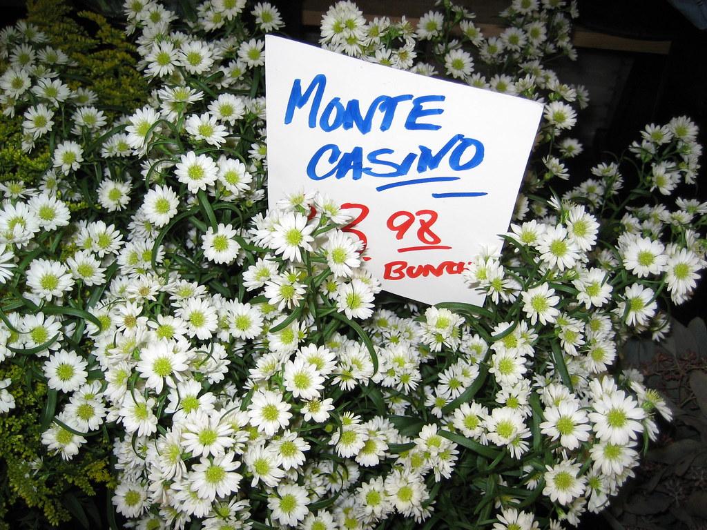 White Monte Casino Flowers Paulson Poker Chips For Sale
