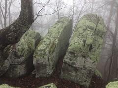 Cool Rocks on Johns Mountain