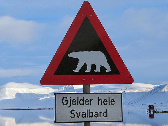 Cartel de osos polares en Svalbard