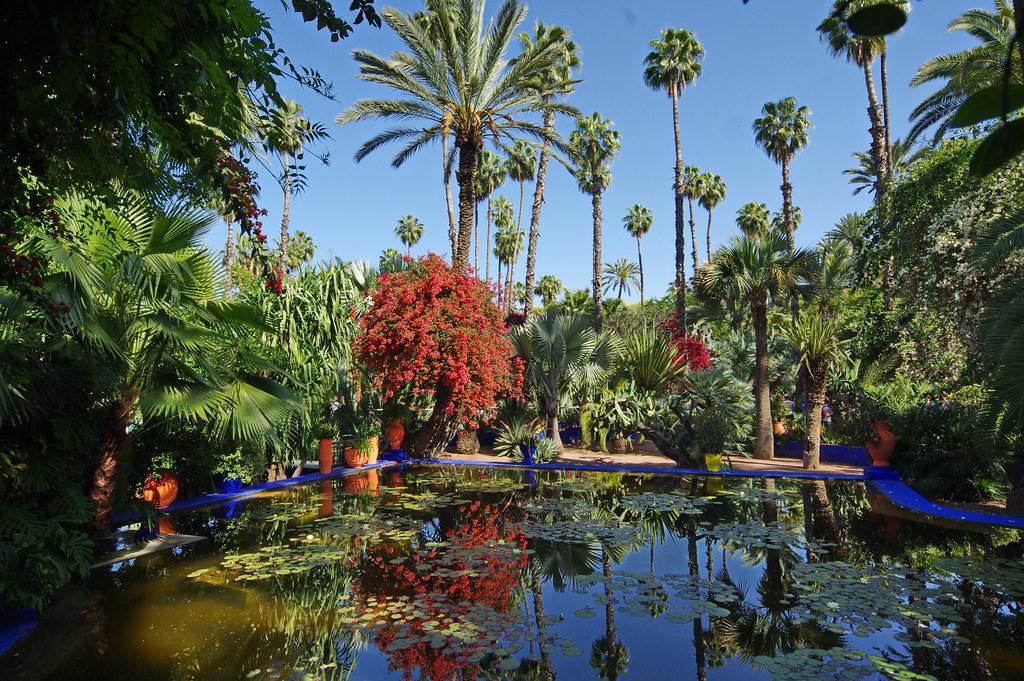 Maroc Marrakech Jardin Majorelle Imgp9966 Mberg68 Flickr