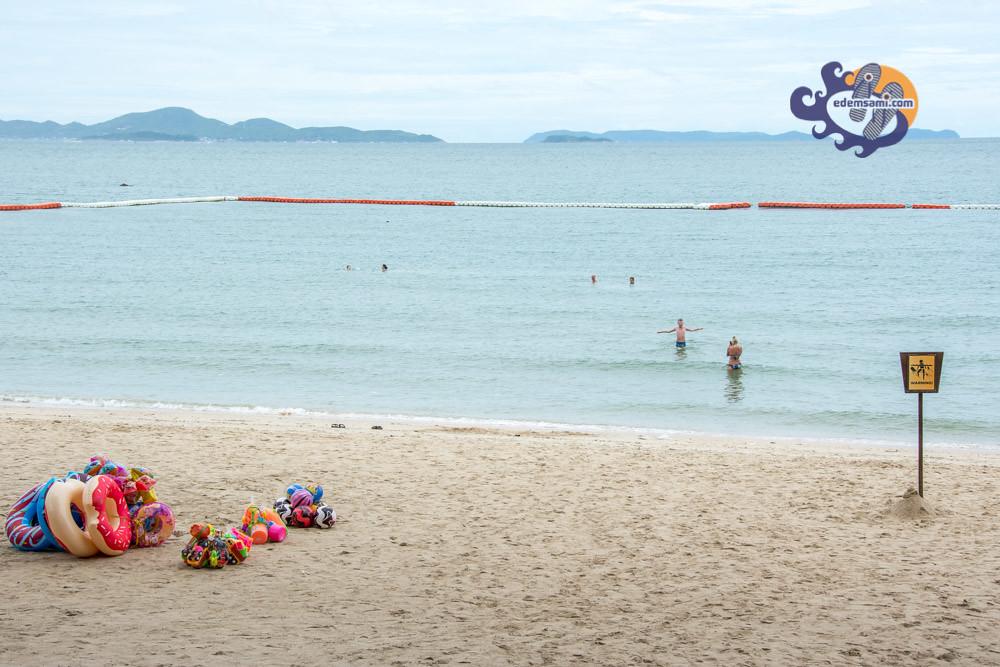 Медузы в Таиланде