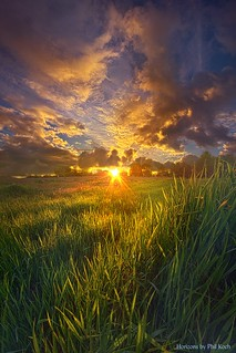 Where The Grass Is Always Greener | by Phil~Koch
