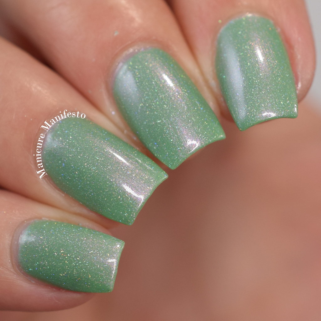 KBShimmer Cactus If You Can review