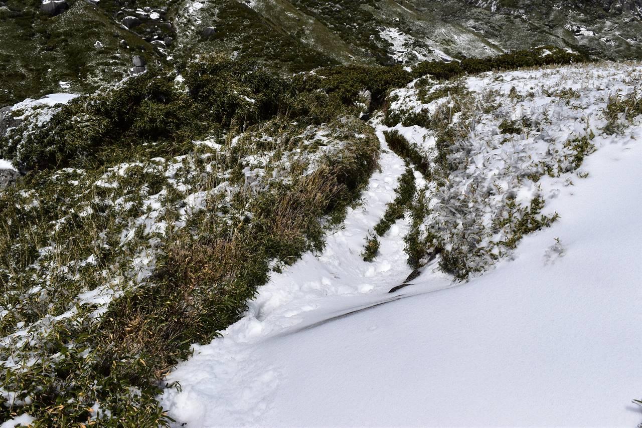 永田岳 雪の登山道