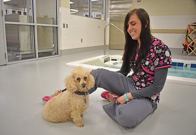 Poochie and her adoptive owner, fourth-year veterinary student Stephanie Siegwald