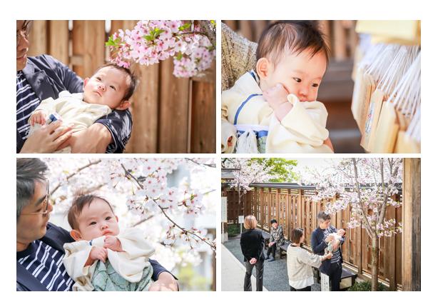 塩竈(しおがま)神社でお宮参り・100日祝い写真の出張撮影 桜 名古屋市天白区 女性プロカメラマンによるロケーションフォト 自然でおしゃれ