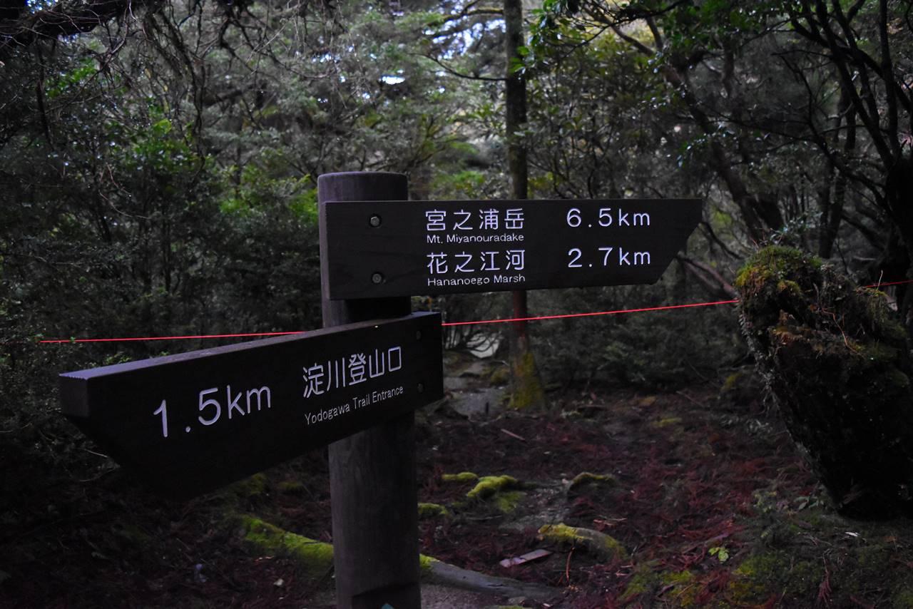 宮之浦岳まで残り6.5km