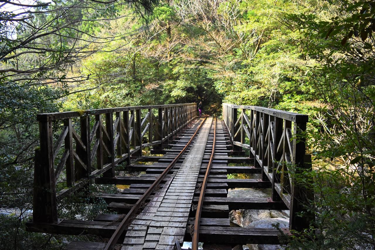 屋久島縄文杉登山 トロッコ道にかかる橋