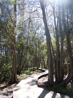 Friendship Path Russell Drysdale Street East Gosford | by Spikebot