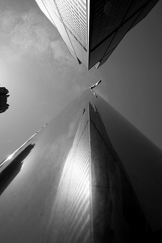 Sears Tower and Flagpole | by Donncha Ó Caoimh