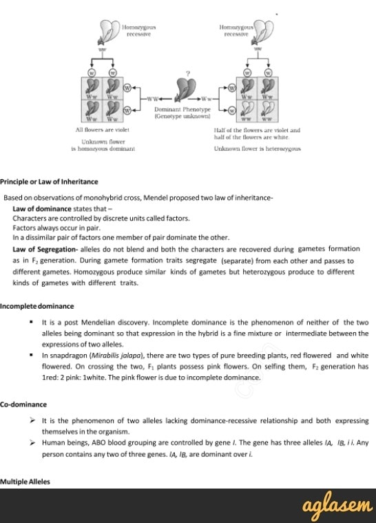 Important Notes of Biology for NEET: Principles of Inheritance and Variation