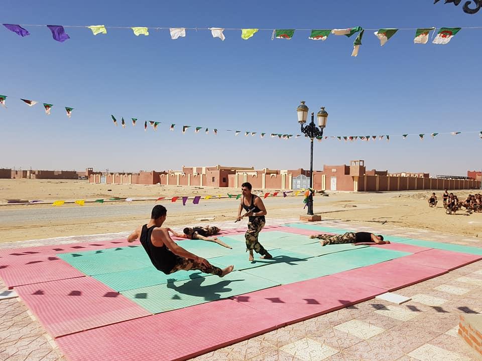 موسوعة الصور الرائعة للقوات الخاصة الجزائرية - صفحة 63 41759074394_9a8e928bed_o
