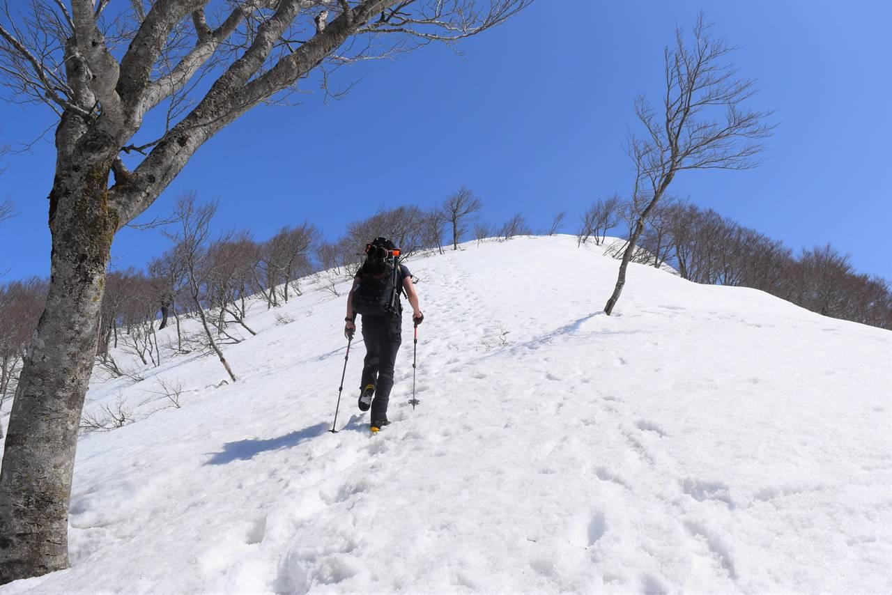 日向倉山 山頂へ最後の直登