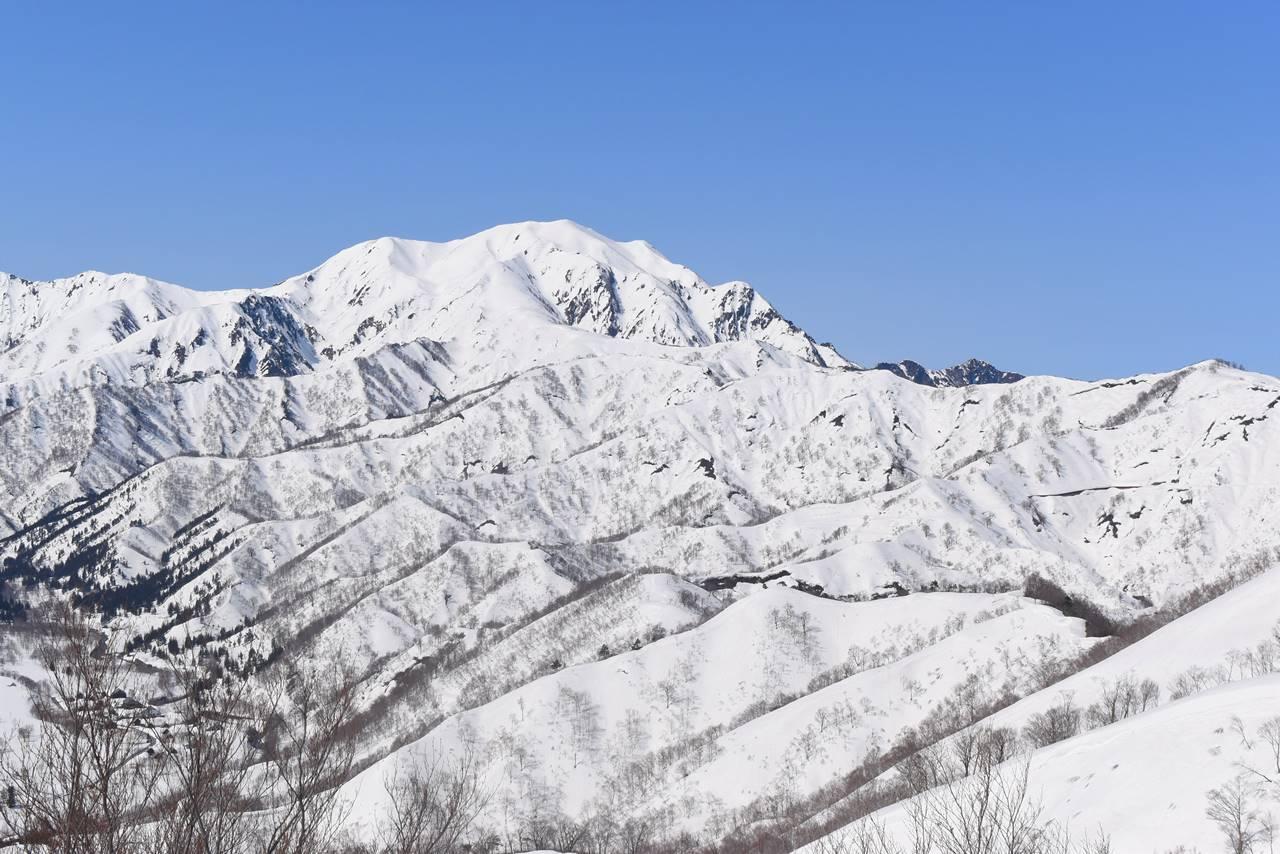 残雪の越後駒ヶ岳と八海山