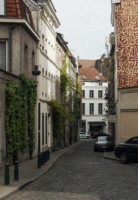 Uliczka Brukseli, porośnięta bluszczem
