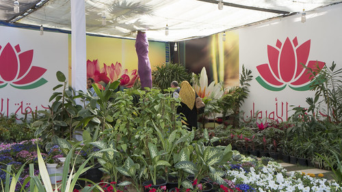 The Orman botanical garden partition at Egypt's Spring Fair 2018 | by Kodak Agfa