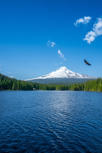View of Mt. Hood from Trillium Lake | by mendhak