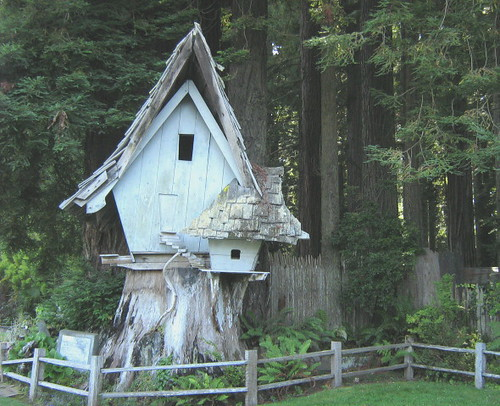Sequoia Park....Tree House | just an old tree house | Flickr