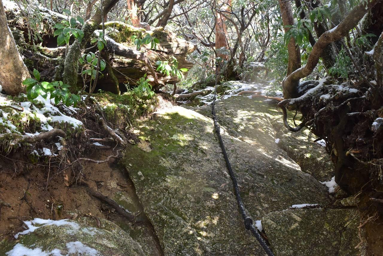 黒味岳登山道のロープ