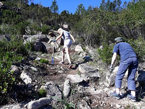 Les travaux de dessouchage dans la montée depuis le col 400m vers la piste de Luviu