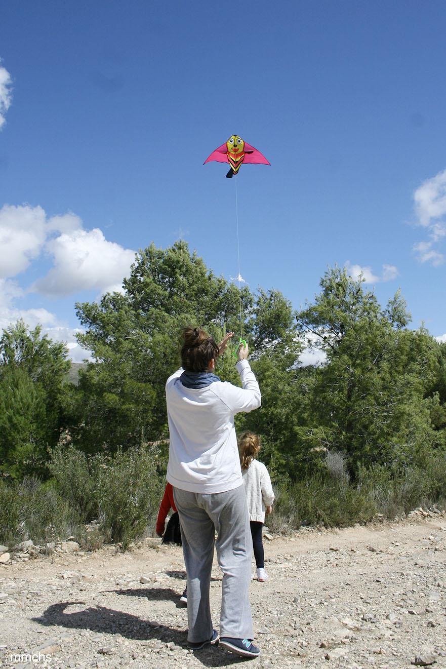 volando la cometa en el campo con niños