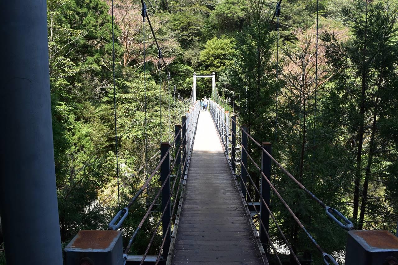 白谷雲水峡・吊り橋